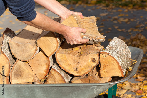 Man placing the firewood on the wheelbarrow