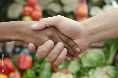 African or black American woman handshake deal