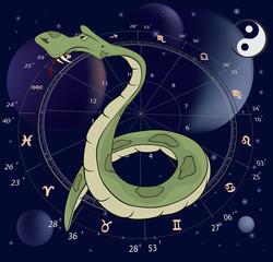 Snake. Horoscope animal sign