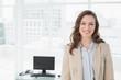 Portrait of an elegant smiling businesswoman in office