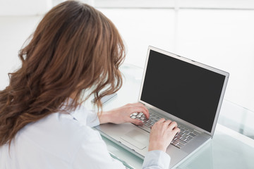 Rear view of a brown haired businesswoman using laptop
