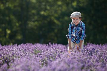 Cute little boy in lavender field