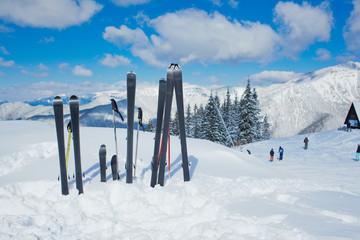 Family set of skis.