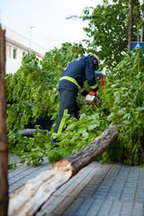 Broken tree on a car, after a storm. Fireman working.