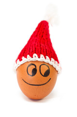 funny lovely  egg in winter santa hat