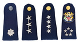 Military uniform insignia of U.S. Army poster