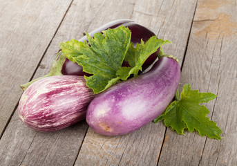 Fresh ripe eggplants