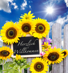 Herzlch Willkommen :) Schiefertafel und Sonnenblumen