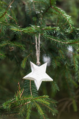 Pine tree with wooden star