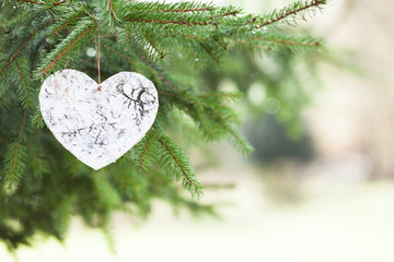 White wooden Heart with Pine tree