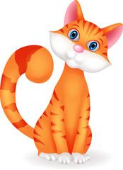 Cat cartoon chartacter