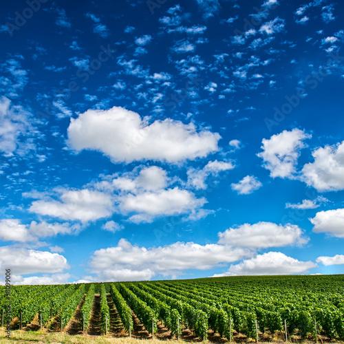 Fototapeten,ackerbau,hintergrund,schönheit,blau