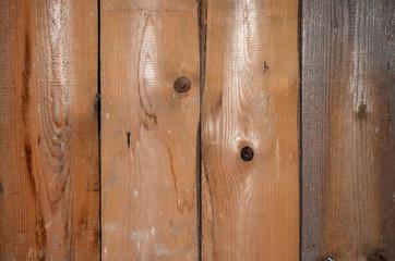 altes Holz Brett Holzwurm
