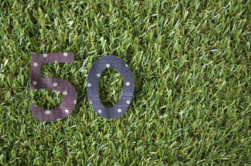 number fifty on grass