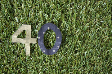 number forty on grass