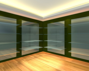 Glass shelves in green empty room