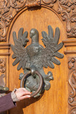 Antique door with knocker in the shape of an eagle