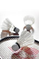 Badminton Kit