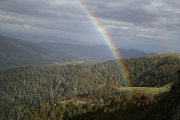 Vosges mountains, Lorraine,