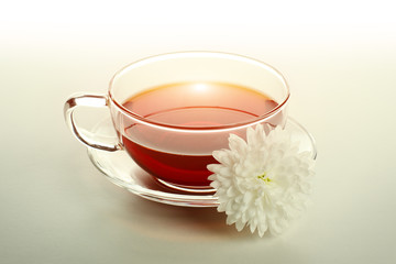Wild rose tea in the glass cup