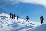 Fototapety hikers in a winter mountain