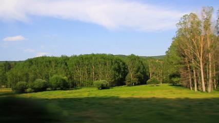 Travelling de paisaje de verano