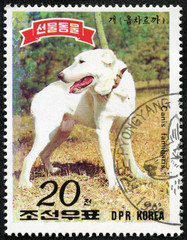 stamp printed in DPR KOREA shows Canis familiaris