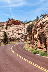 Road in Zion
