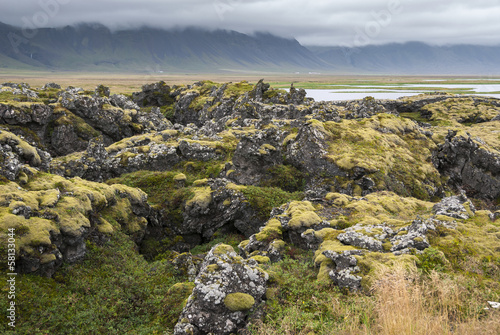 muschio e rocce a Langaholt in Islanda