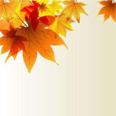 Осенний фон с цветными листьями
