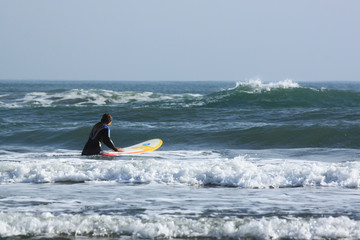 Alla ricerca dell'onda