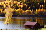 cottage and lake surrounded by autumn colored landscape