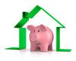Sparschwein in grünem Symbolhaus