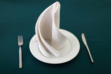 Plate and napkin on table
