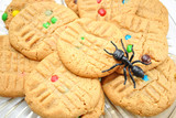 Peanutbutter Cookie with Toy Ant