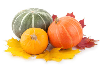colorful pumpkins with autumn leaves