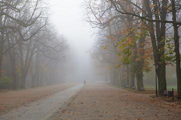 Kurpark at fall, Bad Homburg, Germany