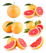 collection of 6 grapefruit images