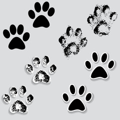 Animal cat paw track feet print icons with shadow.