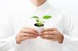 人間の手と自然の植物
