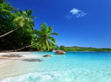 Strand van Praslin island, Seychellen