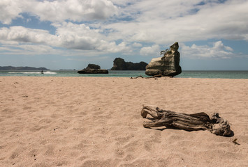 driftwood on beach in Mares Leg Cove