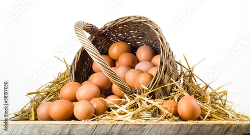 Chicken eggs in basket isolated. Organic food