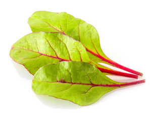 Three leaves of salad isolated on white. Chard