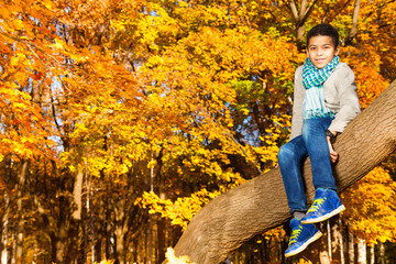Sitting on the tree in autumn park