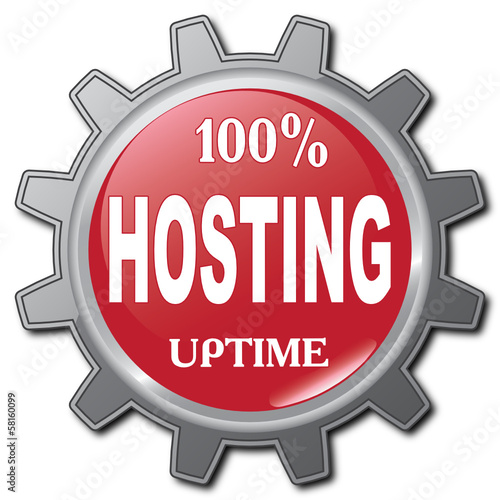 100% HOSTING UPTIME ICON