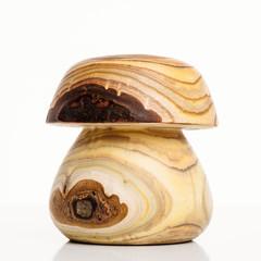Pilz aus Holz