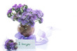 bouquet of flowers with blue phacelia