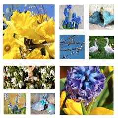Ostercollage Frühlingsblumen