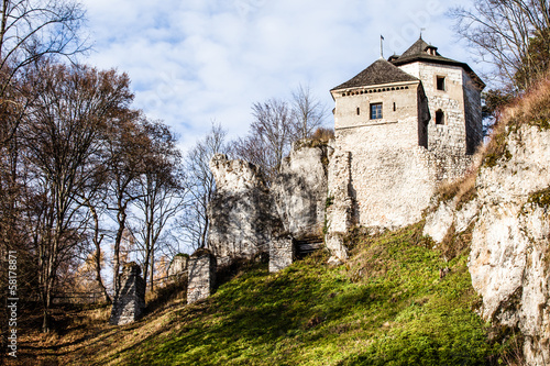 Castle ruins on a hill top in Ojcow, Poland
